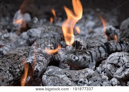 burning of firewood in the grill with open fire