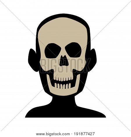 xray of head bone structure of human medical health vector illustration