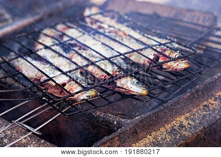 Sardines grilled on barbecue Moroccan street food
