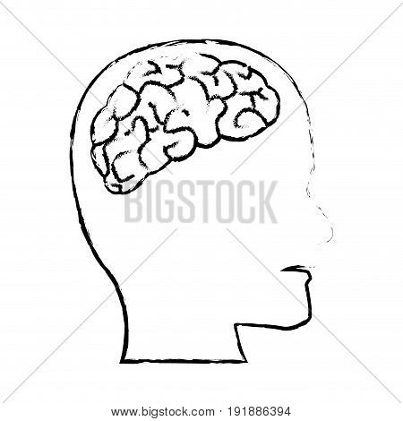 profile human head with brain anatomy vector illustration