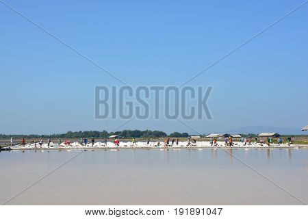 Workers shoveling salt at salt pan at Thailand The making of sea salt in the field at Phetchaburi Province Thailand