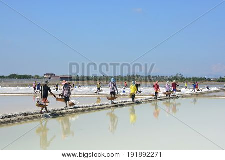Worker shoveling salt at salt pan at Thailand The making of sea salt in the field at Phetchaburi Province Thailand