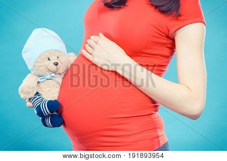 Vintage Photo, Pregnant Woman Holding Teddy Bear At Her Belly, Expecting For Baby Concept