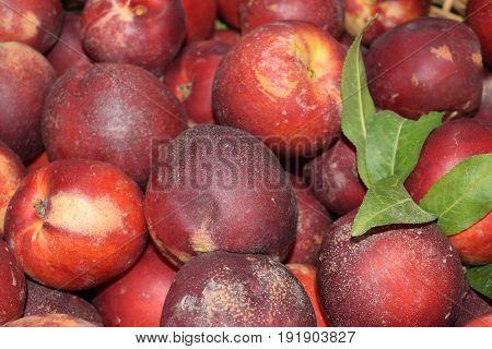 Close Up Of Fresh And Juicy Nectarines