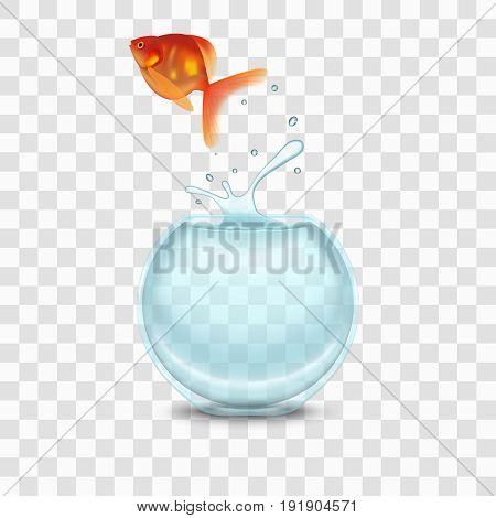 Gold Fish and Glass House Aquarium on a Transparent Background. Vector illustration