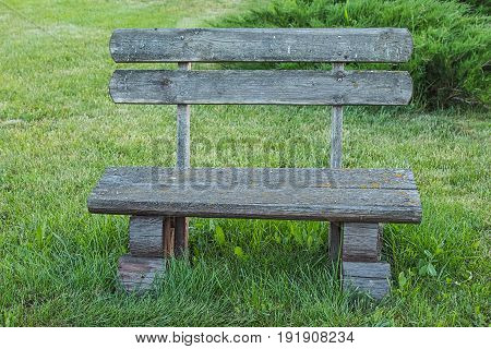 Front view of old handmade wooden bench standing on lawn in the park or garden near juniper. Unfocused background.