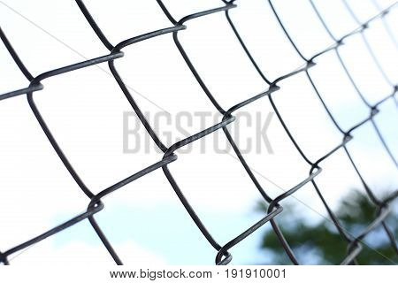 Wire Fences