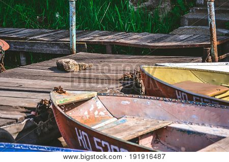Old iron frayed and shabby boat noses tied to wooden dock close-up and cat
