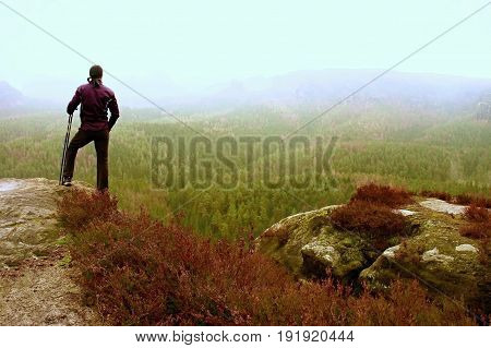 Man Hiker In Dark Sportswear And Poles Stand On Mountain Peak Rock. Red Heather Bushes