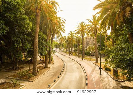 Cycle path near Neratzia Castle and ferry terminal in Kos Greece with palm trees in sunny day.