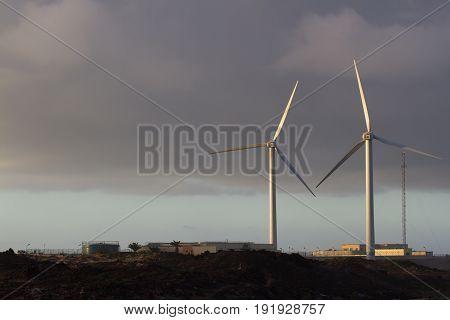 Two wind farms against background of setting sun. Alternative power supplies. Spain, Fuerteventura island