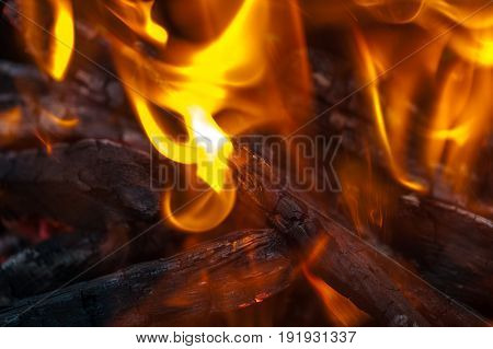 Burning Coals And Flames Background In The Grill