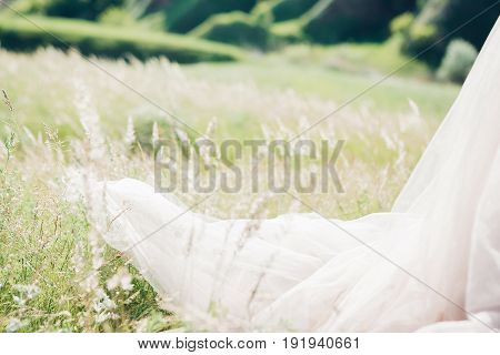 Train of Wedding Dress of bride in nature. fine art photography.