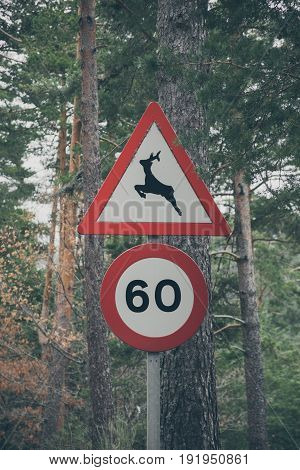 Wildlife signal in the forest. Deer land. Warning sign of deers in a mountain road. Road in the forest. Wild animals road sign. Traffic sign for deer pass with background.