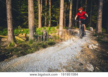 Mountain biker riding on bike in spring inspirational forest landscape. Inspiring sunset biking track. Man cycling MTB on enduro trail track. Sport fitness motivation and inspiration.