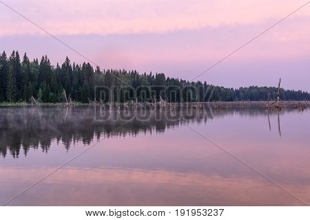 Delicate pink dawn with a forest fragments of trees fog beautiful clouds and their reflections in the smooth water of the lake