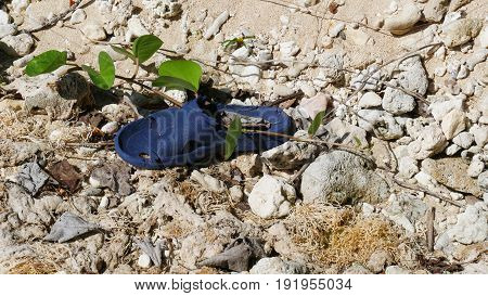 Broken sandal left among the sand and rocks A blue broken sandal abandoned among the rocks in the sand