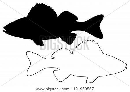 perch silhouette vector , ( Perca fluviatilis )