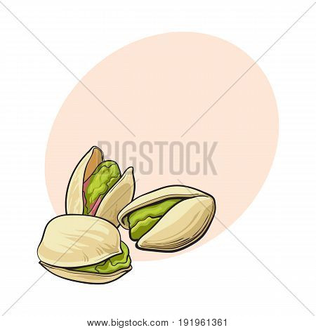 Group of pistachio nuts, shelled and unshelled, sketch style vector illustration with space for text. Realistic hand drawing of pistachio nuts