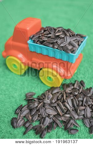 Black sunflower seeds lie in the back of a bright children's toy car and are piled up next to a grassy-green background a vertical frame.