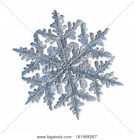 Snowflake isolated on white background. Macro photo of real snow crystal: large stellar dendrite with elegant, complex shape, fine hexagonal symmetry and six long arms with lots of side branches.