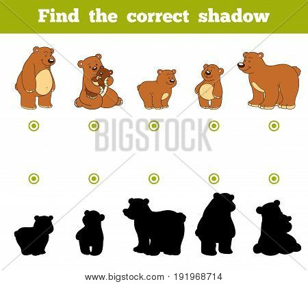 Find the correct shadow education game for children. Set of cartoon bears