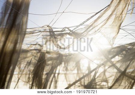 Flying Nets