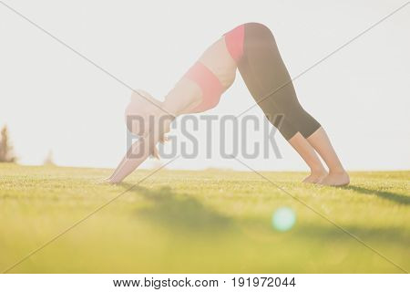 Young Woman In Pink Top And Black Sport Wear, With Tail, Barefoot Is Practicing Yoga In Beautiful Na