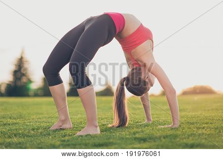 Young Lady Yoga Trainer In Bridge Position In The Morning In A Spring Green Park Outdoors, Training