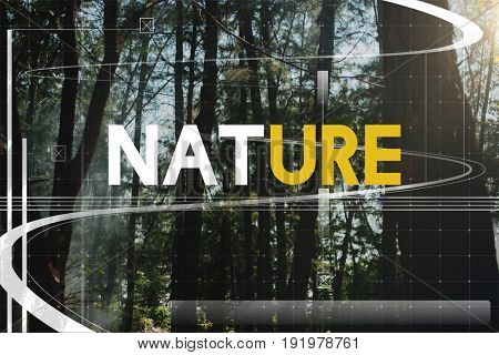 Nature Ecology Environmental Conservation Earth