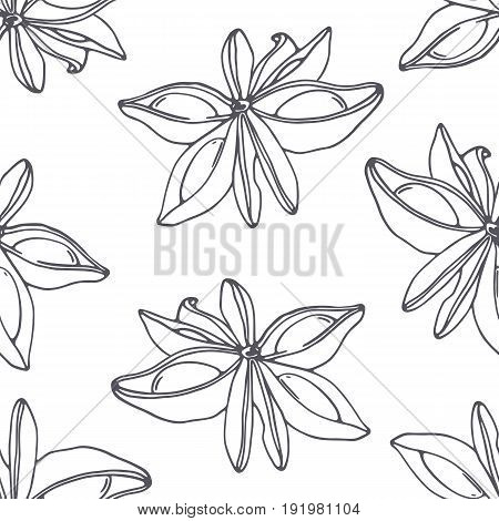 Hand drawn outline seamless pattern with anise. Black and white food background. Vector illustration