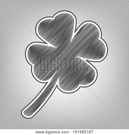 Leaf clover sign. Vector. Pencil sketch imitation. Dark gray scribble icon with dark gray outer contour at gray background.