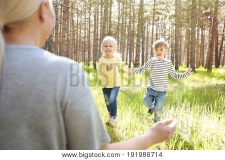 Happy grandmother playing with little children in forest on sunny day