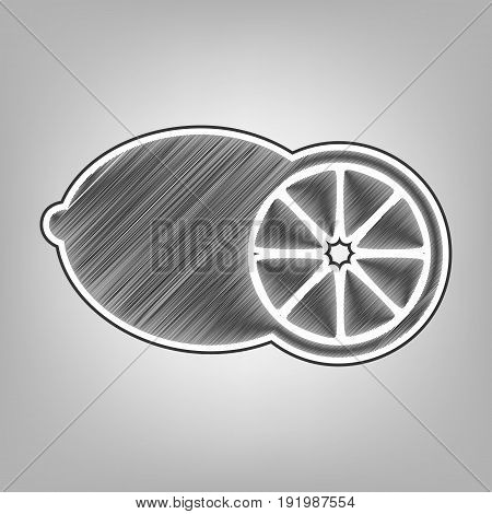Fruits lemon sign. Vector. Pencil sketch imitation. Dark gray scribble icon with dark gray outer contour at gray background.