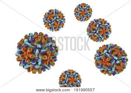 Heptitis B viruses isolated on white background, 3D illustration