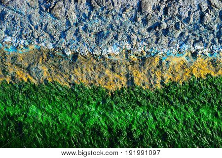 Multicolor background of drying algae on the quay