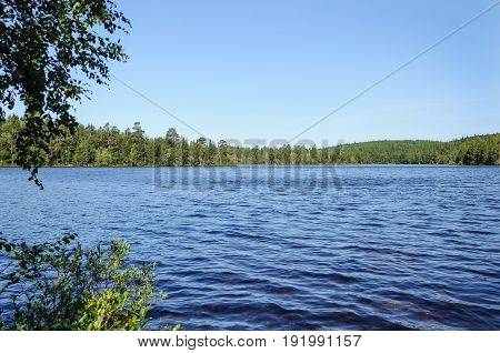 View of a big forest lake on Bolshoy Solovetsky Island sunny summer day