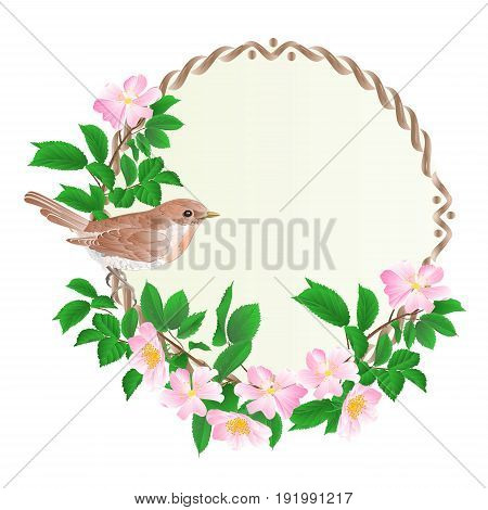 Floral round frame with wild Roses and cute small singing bird vintage festive background vector illustration editable hand draw