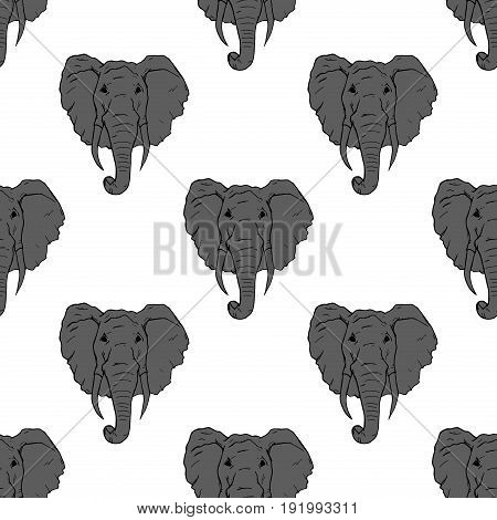 Elephant seamless pattern on white. Nature african elephant large vector illustration strong huge zoo. Safari africa portrait strength animal head symbol. Ethnic icon wild mammal.