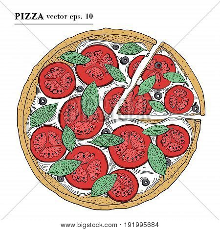Italian Pizza margarita hand drawn vector illustration. Can be use for pizzeria, cafe, shop, restaurant.