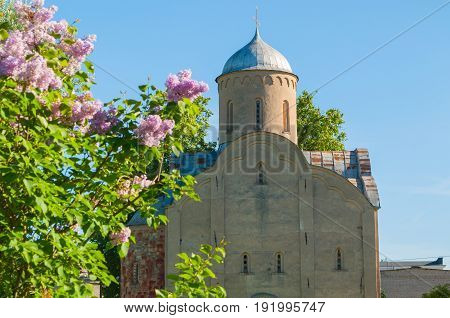 Old medieval Orthodox church of Peter and Paul at Slavna in Veliky Novgorod Russia focus at the church architecture spring landscape. Architecture view of Veliky Novgorod Russia