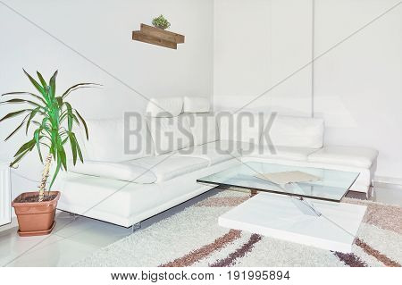 Sofa and Glass Table in the Corner of the Room