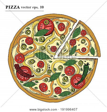 Italian Pizza vegetarian hand drawn vector illustration. Can be use for pizzeria, cafe, shop, restaurant.