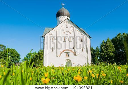 The ancient medieval church of the Transfiguration of Our Savior on Ilin street in Veliky Novgorod Russia architectural landscape with blooming dandelions on the foreground.Architecture view of Veliky Novgorod Russia