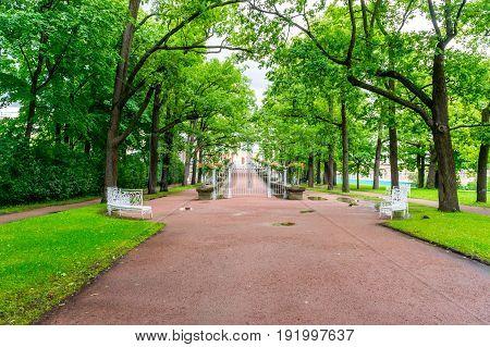 RUSSIA Tsarskoe Selo - JULY 20 2013. Alley in the park in Tsarskoye Selo
