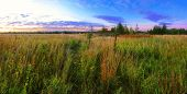 Stitched panorama of evening in the summer field. poster