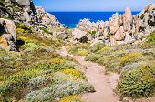Walky path between bizarre granite rock formations in Capo Testa, Sardinia, Italy. poster