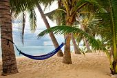 View of nice tropical empty sand beach with some palm and hammock in bad weather. Samui island. Thailand poster