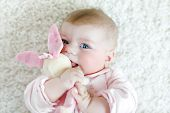 Cute adorable newborn baby playing with colorful pastel plush bunny toy. New born child, little girl looking at the camera. Baby learning grab poster