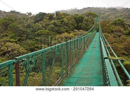 Hanging Bridge In Monteverde Reserve In Costarica